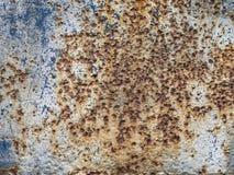 Lusty iron texture. Old lusty blue iron texture royalty free stock photos