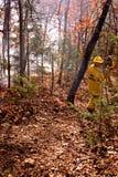 Luta contra o incêndio imagens de stock royalty free