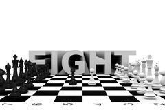 Luta da xadrez Imagem de Stock Royalty Free