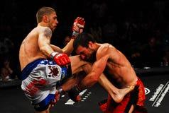 Luta de Tom Evans v. Dominic Warr MMA Imagem de Stock Royalty Free