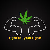 Luta para que seu direito legalize o cannabis Fotos de Stock Royalty Free