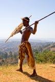 Lutador africano do tribo Zulu imagem de stock royalty free