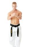 Lutador de Taekwondo Fotos de Stock Royalty Free