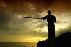 Lutador do Aikido Fotografia de Stock