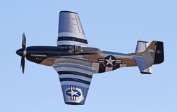 Lutador do mustang do vintage P-51 Foto de Stock