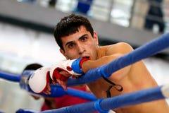 Lutador misturado das artes marciais Imagens de Stock