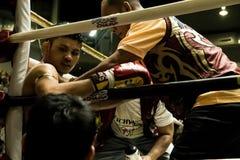 Lutador tailandês de Muay Foto de Stock Royalty Free