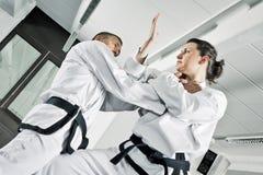 Lutadores das artes marciais Imagem de Stock
