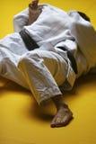 Lutadores do judo Foto de Stock