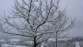 Lutande ner skottet av platan som täckas i insnöad vinter på aftonen långsam rörelse arkivfilmer