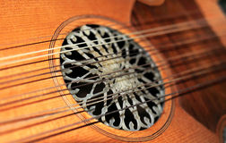 Lute strings Royalty Free Stock Image