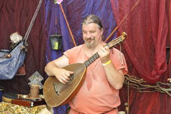 Lutenist, Medieval Festival, Nuremberg 2013 Royalty Free Stock Photography