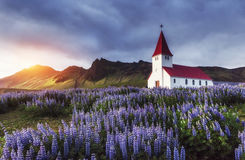 Lutheran Church In Vik. Iceland. Stock Photography