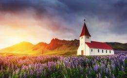 Lutherankyrka i Vik De pittoreska landskapen av skogar royaltyfri foto