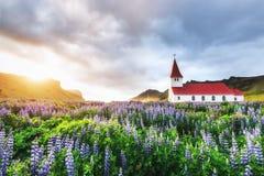 Lutherankyrka i Vik iceland arkivfoton