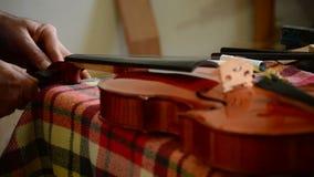 Luthier устанавливая строки к скрипке или альту в рабочем месте акции видеоматериалы