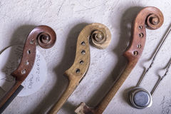 Luthier Imagem de Stock