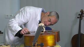 Luthier coloca un alma del violoncelo almacen de metraje de vídeo
