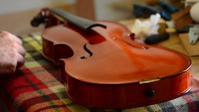 Luthier craftsman working in a violin or viola in workplace stock video footage