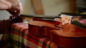 Luthier placing the strings to a violin in workplace stock footage