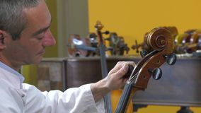 The luthier tune the four strings of cello stock video