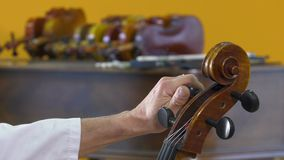 LuthThe luthier tune the four strings of cello stock video