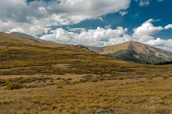 Lutning av Colorado berg i tidig nedgång Royaltyfria Bilder