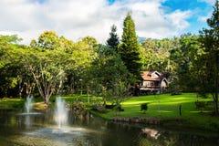 Lutning för grön dal för hussemesterort i trädgård Arkivbild