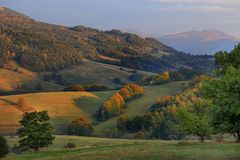 Lutningar av de Bieszczady bergen i sydostliga Polen - den Bieszczadzki nationalparken Arkivfoton