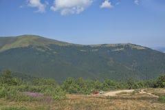 Lutningarna av de Carpathian bergen Royaltyfri Fotografi