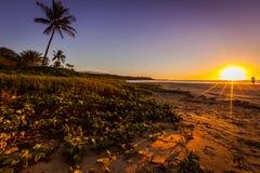 Lutningen färgar på solnedgången på en sandig strand med grönska på Arkivfoton