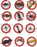Lutte contre les parasites - panneau d'avertissement Photo libre de droits