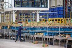 Workman in Dutch greenhouse with wrapping up peppers Stock Images