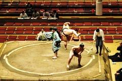 Lutteurs éditoriaux dans le tournoi de sumo Image libre de droits