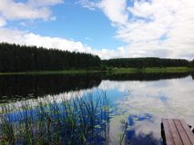 Luttle lake with water lilies in Siberia stock images