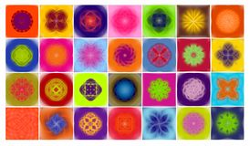 Lutus flowers. 28 different colored lotus flowers stock illustration