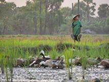 04 2017 Luty, Hpa-an Myanmar - Młoda azjatykcia chłopiec pozycja w a Obrazy Stock