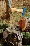 Luvas azuis do machado e dos trabalhadores Fotografia de Stock Royalty Free
