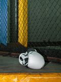 Luvas de encaixotamento do couro branco no assoalho dentro da gaiola do Muttahida Majlis-E-Amal Foto de Stock