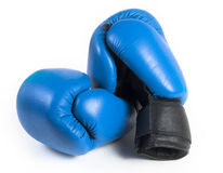 Luvas de encaixotamento protetoras azuis Fotos de Stock Royalty Free