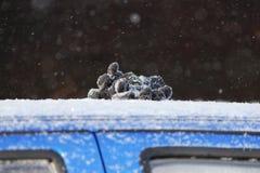luvas de trabalho da mentira do motorista na capa do carro azul, que é atolado e desliza no monte de neve Tiro da reportagem imagens de stock