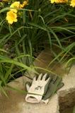 Luvas do jardim Fotos de Stock Royalty Free
