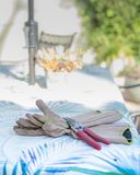 Luvas e Clippers de jardinagem em uma tabela Imagens de Stock Royalty Free