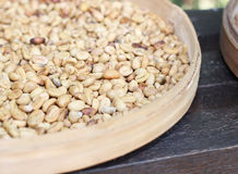 Luwak  beans in a basket Royalty Free Stock Photos