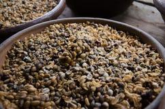 Luwak coffee beans. Luwak coffee in Bali, Indonesia. Coffee bean in making Royalty Free Stock Photos