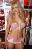Luxúria de Lori no Pin acima da expo Glamourcon 38. Radisson RELAXADO, Los Angeles, CA 06-10-06 Imagem de Stock