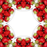 Luxe de fraise Photographie stock