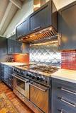 Luxe mooie donkere moderne keuken met gewelfd houten plafond royalty-vrije stock afbeeldingen