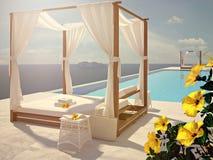Luxe zwembad met hibiscusbloem de kleur geeft uit het 3d teruggeven Royalty-vrije Stock Afbeelding