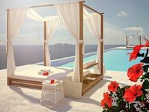 Luxe zwembad met hibiscusbloem de kleur geeft uit het 3d teruggeven Stock Afbeeldingen